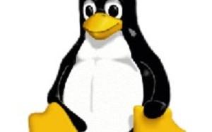 Linux 2.6.19.2 mit 50 Korrekturen